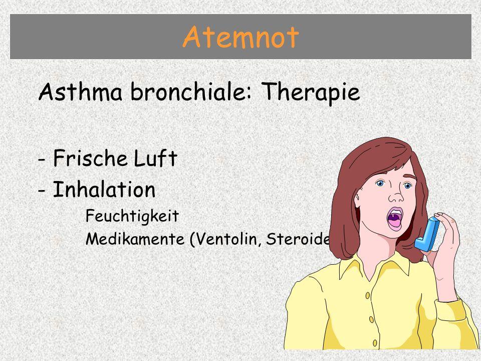 Asthma bronchiale: Therapie - Frische Luft - Inhalation Feuchtigkeit Medikamente (Ventolin, Steroide) Atemnot