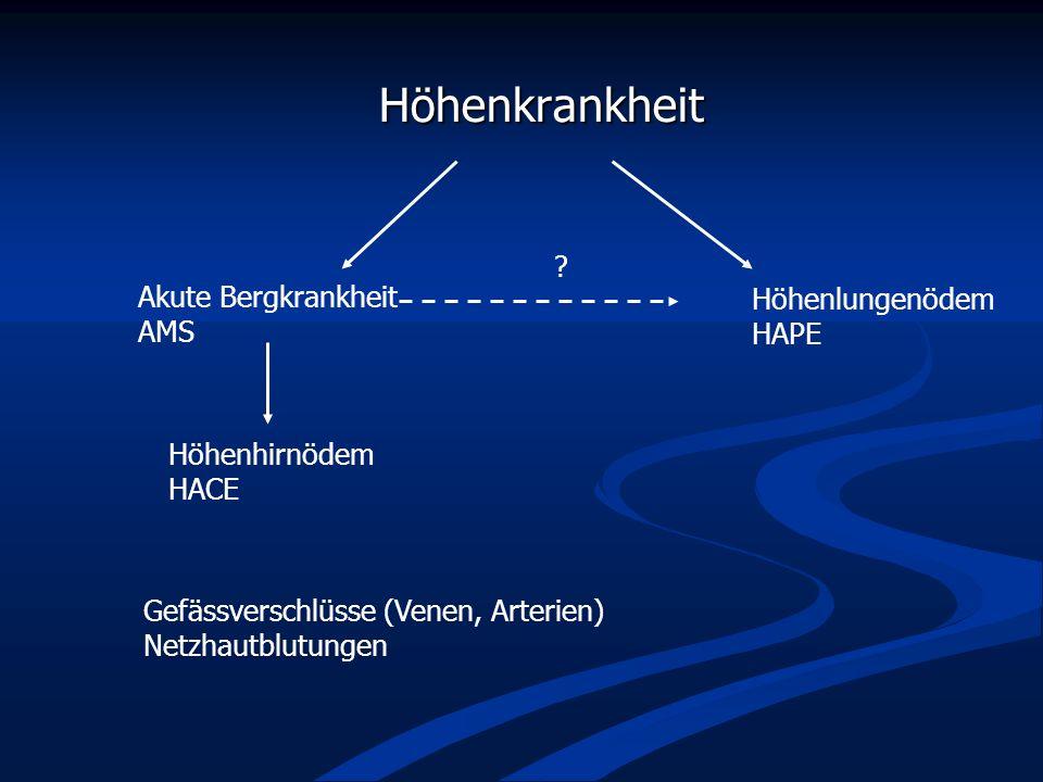 Höhenkrankheit Höhenkrankheit Höhenlungenödem HAPE Akute Bergkrankheit AMS Höhenhirnödem HACE ? Gefässverschlüsse (Venen, Arterien) Netzhautblutungen