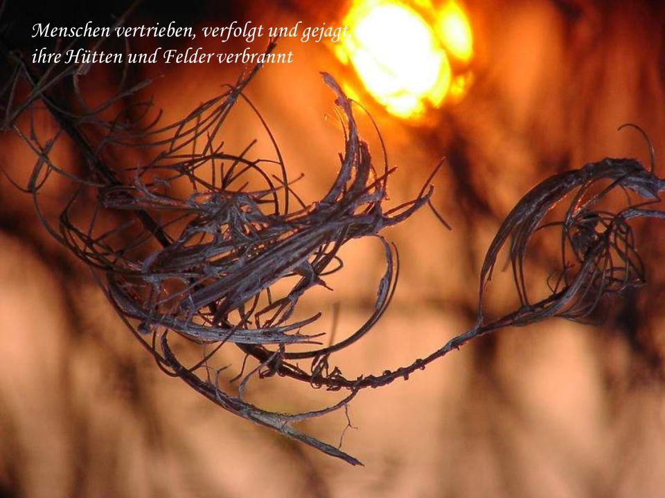 keiner soll weg´n der Kälte der anderen frier´n ohne Neid und Gewalt tief in Einheit leben