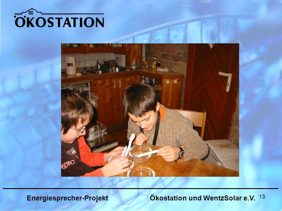 13 _______________________________________________________________ Energiesprecher-Projekt Ökostation und WentzSolar e.V.