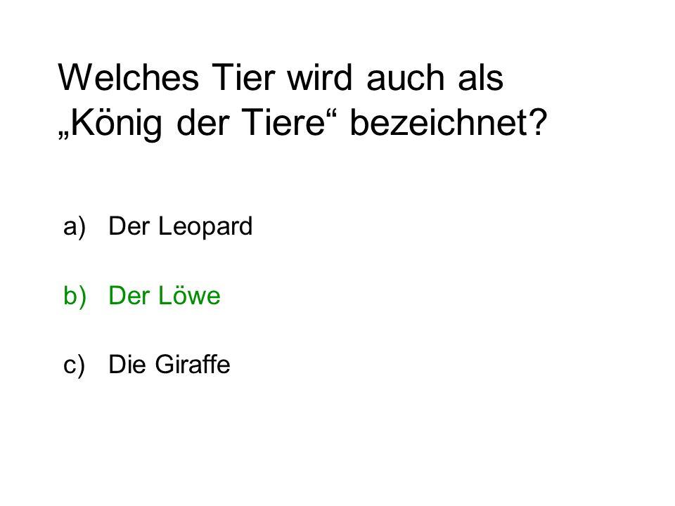 Welches Tier wird auch als König der Tiere bezeichnet? a)Der Leopard b)Der Löwe c)Die Giraffe