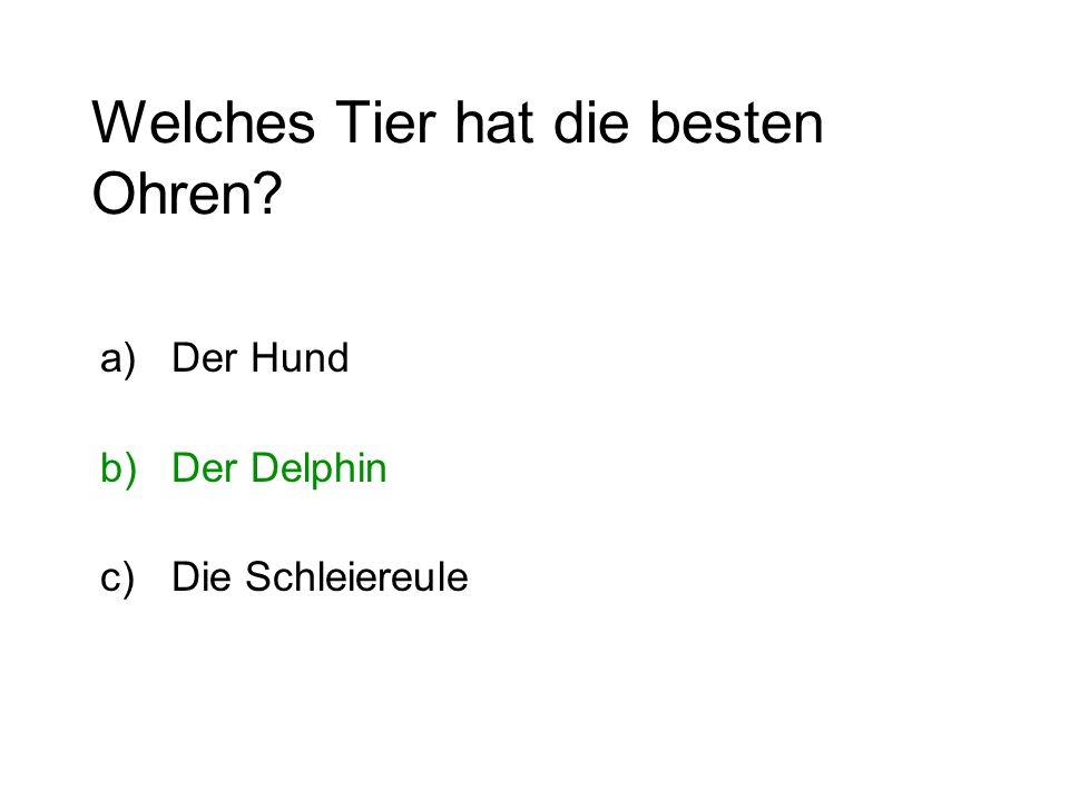 Welches Tier hat die besten Ohren? a)Der Hund b)Der Delphin c)Die Schleiereule