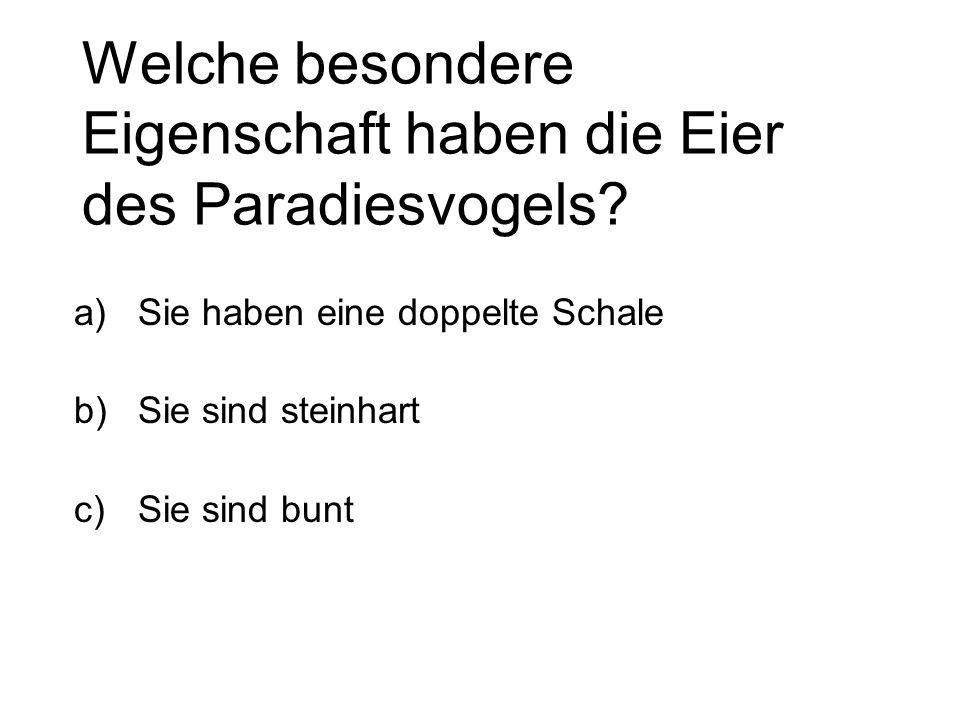 Welche besondere Eigenschaft haben die Eier des Paradiesvogels? a)Sie haben eine doppelte Schale b)Sie sind steinhart c)Sie sind bunt