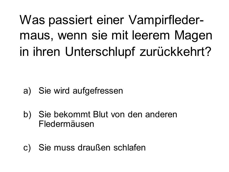 Was passiert einer Vampirfleder- maus, wenn sie mit leerem Magen in ihren Unterschlupf zurückkehrt? a)Sie wird aufgefressen b)Sie bekommt Blut von den