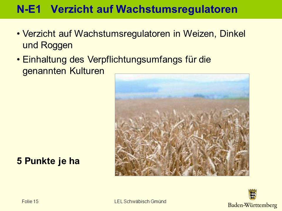 Folie 15 LEL Schwäbisch Gmünd N-E1 Verzicht auf Wachstumsregulatoren 5 Punkte je ha Verzicht auf Wachstumsregulatoren in Weizen, Dinkel und Roggen Ein