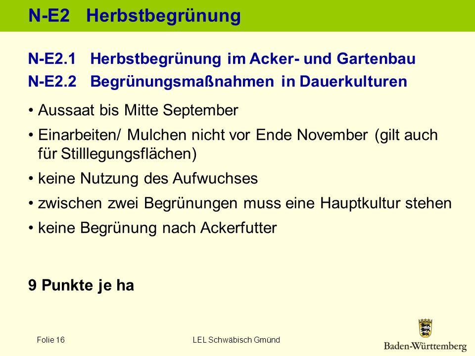 Folie 16 LEL Schwäbisch Gmünd N-E2 Herbstbegrünung 9 Punkte je ha Aussaat bis Mitte September Einarbeiten/ Mulchen nicht vor Ende November (gilt auch