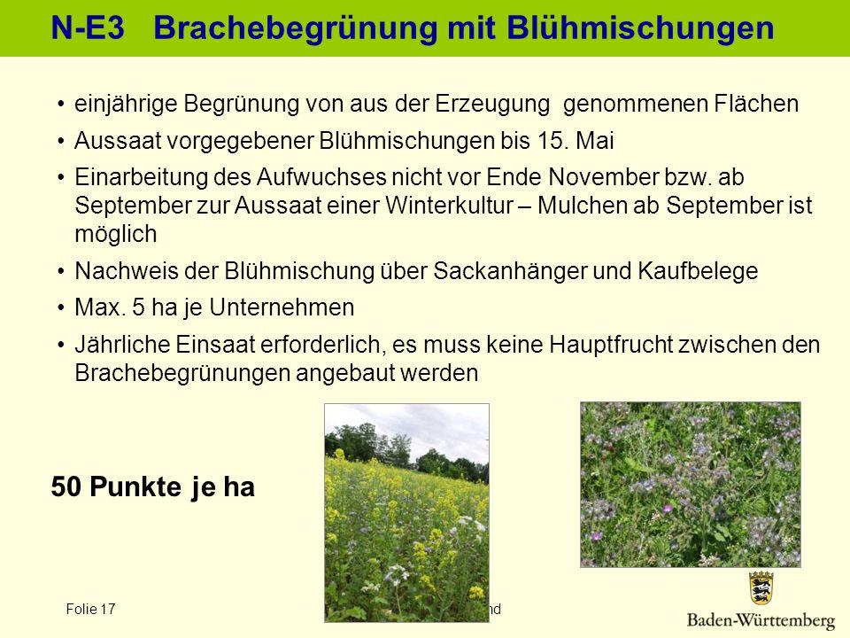 Folie 17 LEL Schwäbisch Gmünd N-E3 Brachebegrünung mit Blühmischungen 50 Punkte je ha einjährige Begrünung von aus der Erzeugung genommenen Flächen Au