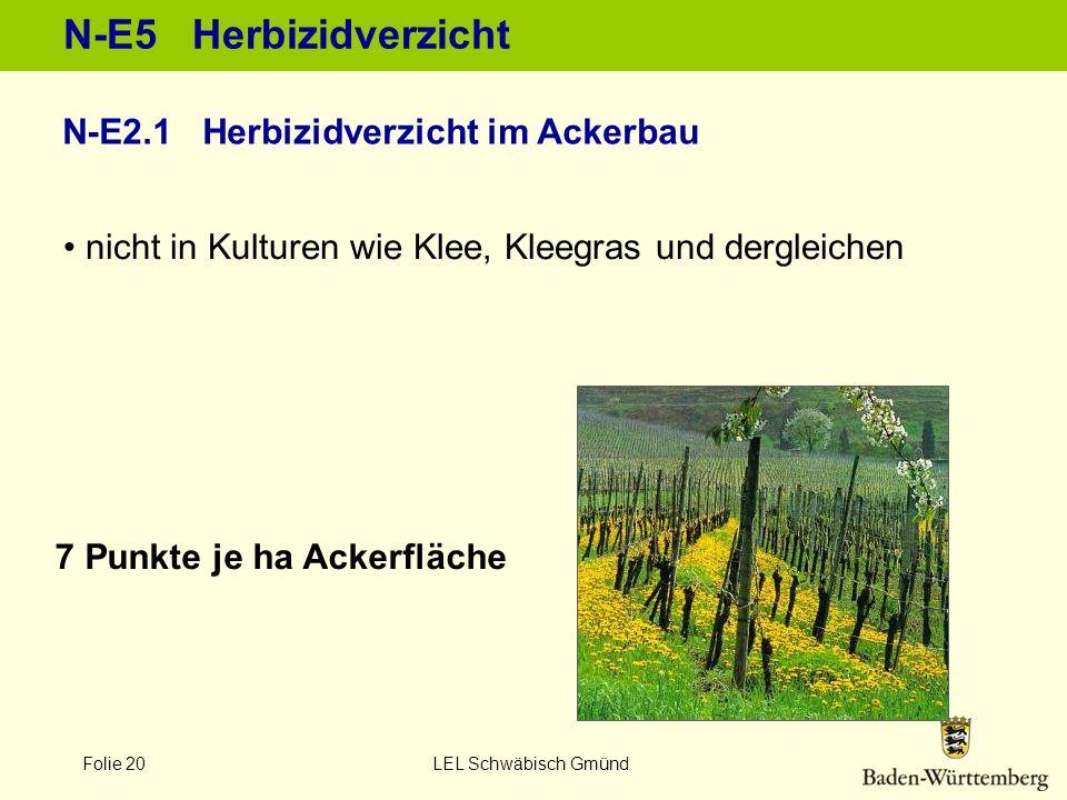 Folie 20 LEL Schwäbisch Gmünd N-E5 Herbizidverzicht 7 Punkte je ha Ackerfläche nicht in Kulturen wie Klee, Kleegras und dergleichen N-E2.1 Herbizidver