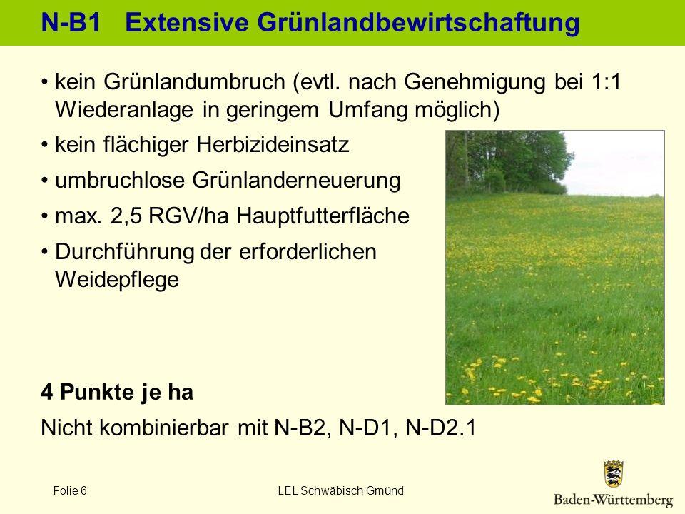 Folie 7 LEL Schwäbisch Gmünd N-B2 Viehbesatz 0,3 - 1,4 RGV/ha HFF Einhaltung des Viehbesatzes im Verpflichtungszeitraum Grundanforderungen nach N-B1 sind einzuhalten Neue Futterflächen und RGV-Bewertung zu MEKA II 10 Punkte je ha Grünland ab 2009 nicht kombinierbar mit N-B1, N-D2.1; nur 4 Punkte bei Kombination mit N-D1