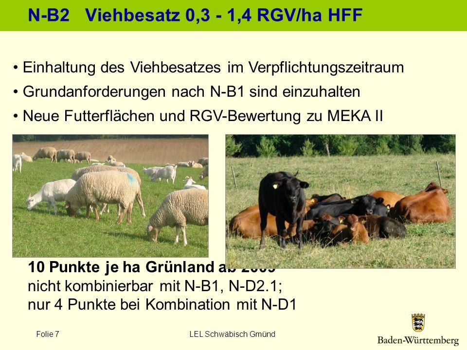 Folie 7 LEL Schwäbisch Gmünd N-B2 Viehbesatz 0,3 - 1,4 RGV/ha HFF Einhaltung des Viehbesatzes im Verpflichtungszeitraum Grundanforderungen nach N-B1 s