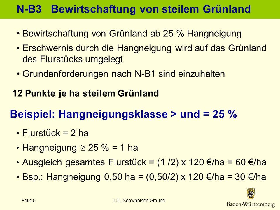 Folie 8 LEL Schwäbisch Gmünd N-B3 Bewirtschaftung von steilem Grünland 12 Punkte je ha steilem Grünland Bewirtschaftung von Grünland ab 25 % Hangneigu