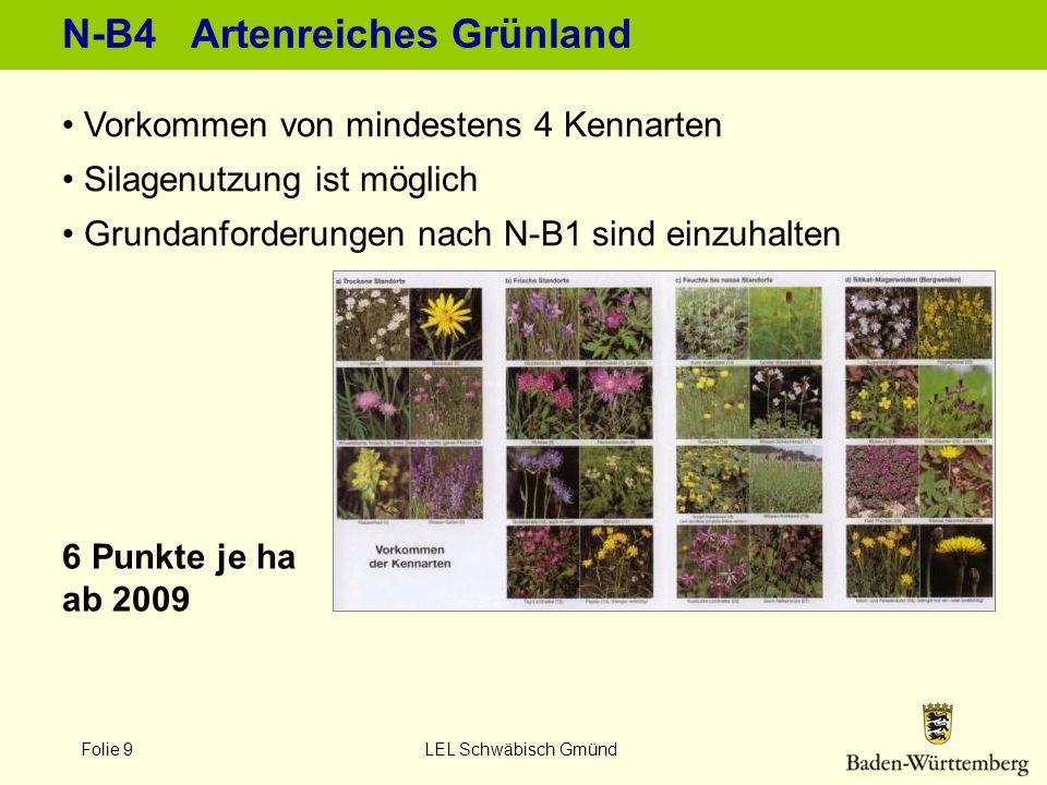 Folie 9 LEL Schwäbisch Gmünd N-B4 Artenreiches Grünland Vorkommen von mindestens 4 Kennarten Silagenutzung ist möglich Grundanforderungen nach N-B1 si