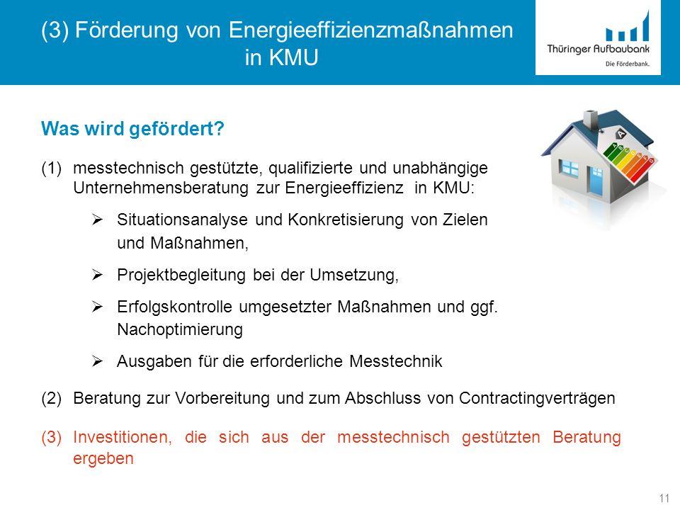 11 Was wird gefördert? (1)messtechnisch gestützte, qualifizierte und unabhängige Unternehmensberatung zur Energieeffizienz in KMU: Situationsanalyse u