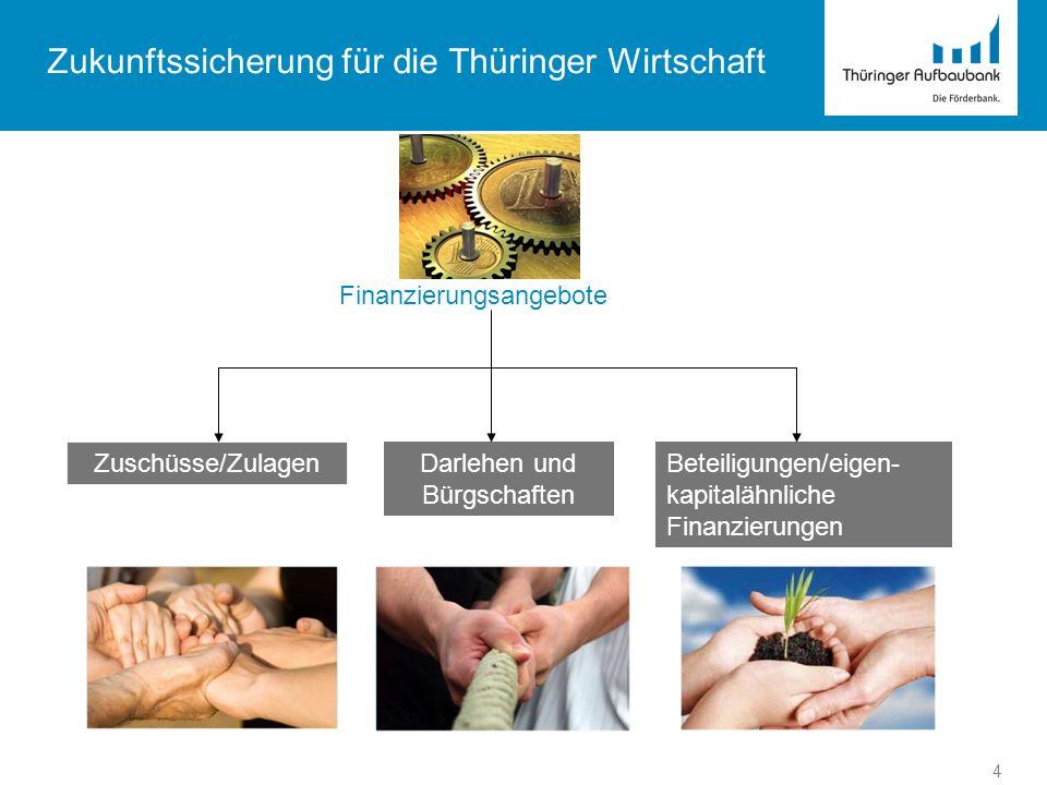 4 Zukunftssicherung für die Thüringer Wirtschaft Finanzierungsangebote Zuschüsse/Zulagen Darlehen und Bürgschaften Beteiligungen/eigen- kapitalähnlich
