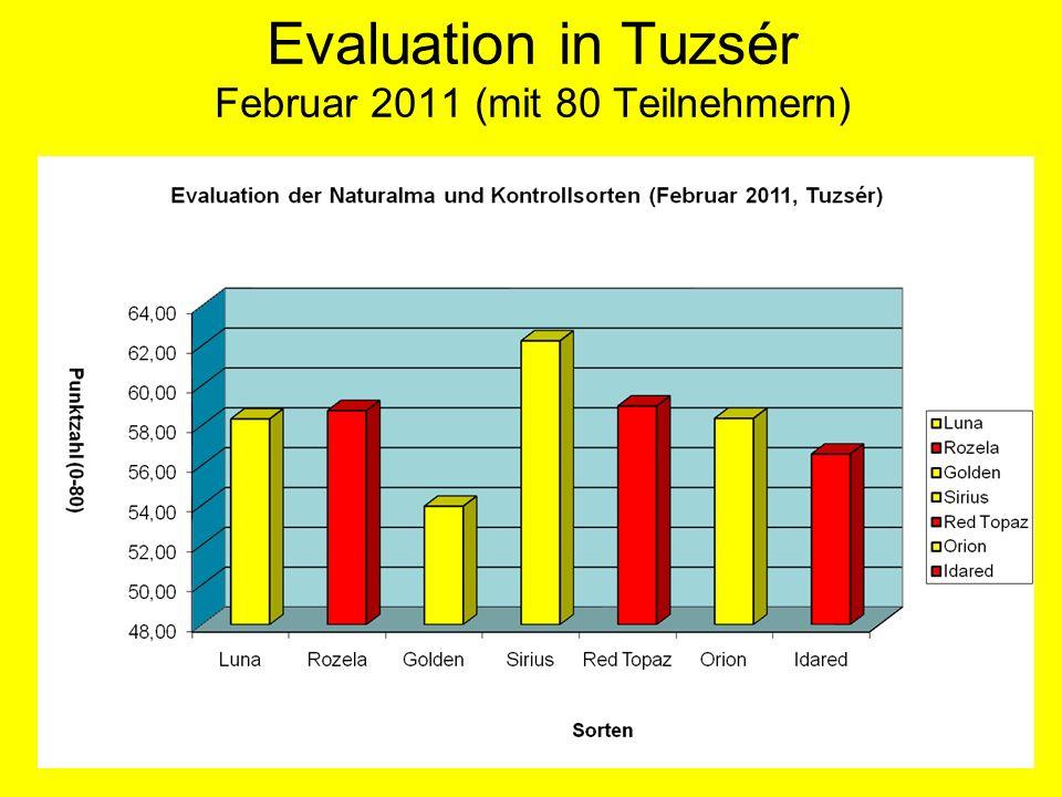 Evaluation in Tuzsér Februar 2011 (mit 80 Teilnehmern)