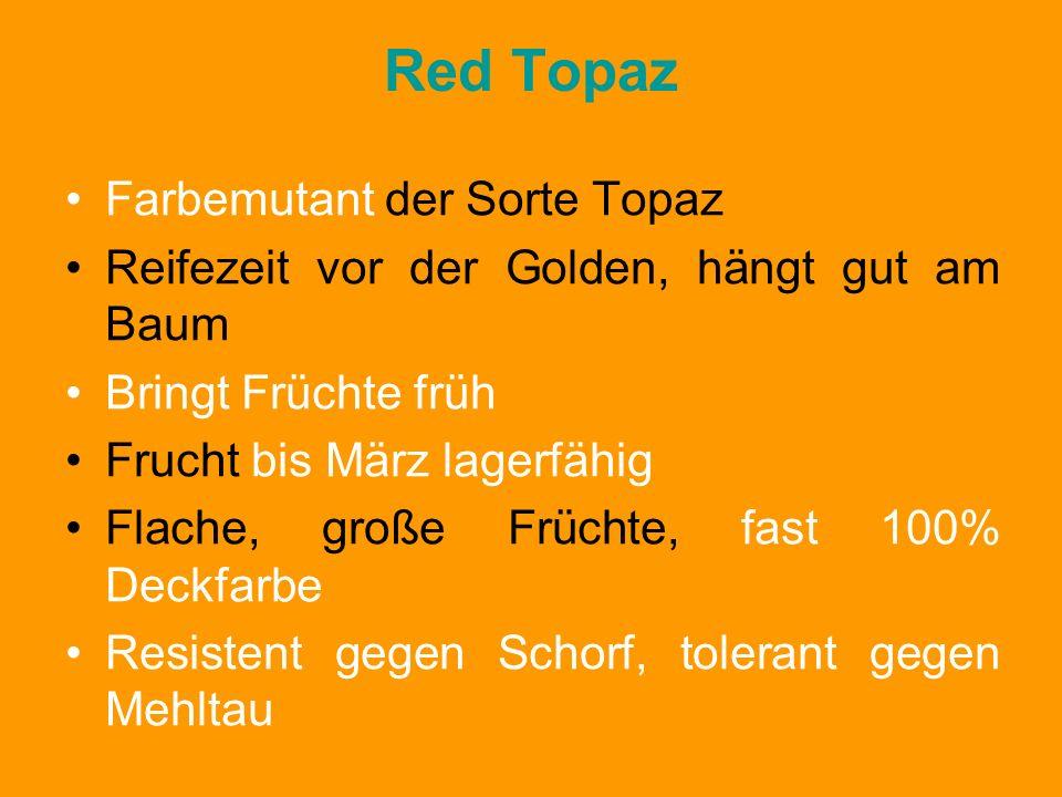 Red Topaz Farbemutant der Sorte Topaz Reifezeit vor der Golden, hängt gut am Baum Bringt Früchte früh Frucht bis März lagerfähig Flache, große Früchte, fast 100% Deckfarbe Resistent gegen Schorf, tolerant gegen Mehltau