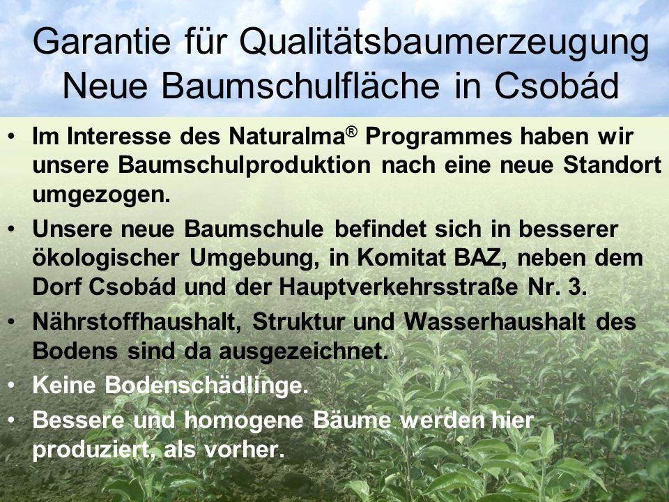 Garantie für Qualitätsbaumerzeugung Neue Baumschulfläche in Csobád Im Interesse des Naturalma ® Programmes haben wir unsere Baumschulproduktion nach e