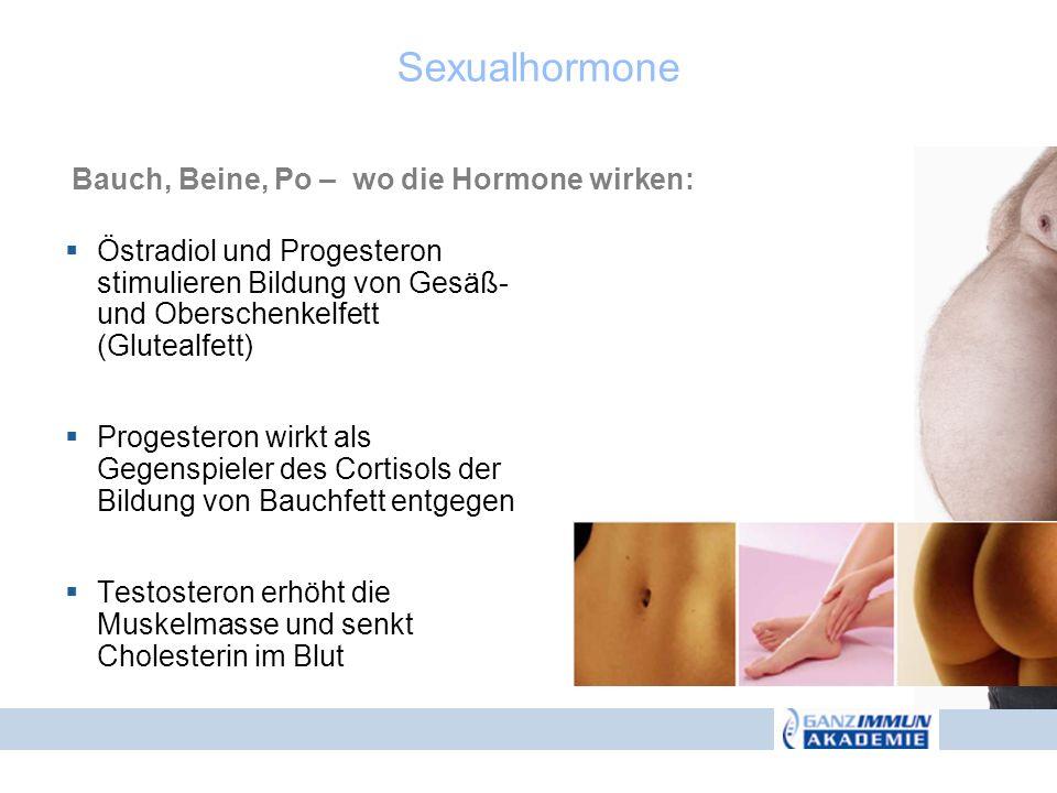 Östradiol und Progesteron stimulieren Bildung von Gesäß- und Oberschenkelfett (Glutealfett) Progesteron wirkt als Gegenspieler des Cortisols der Bildu