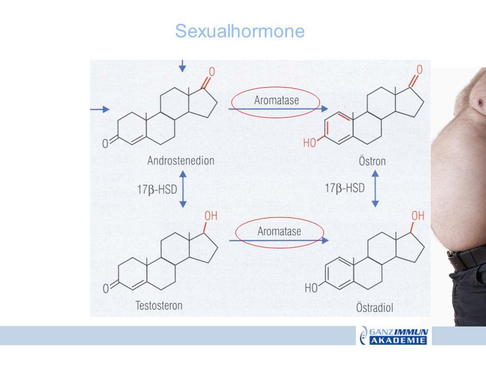 Sexualhormone