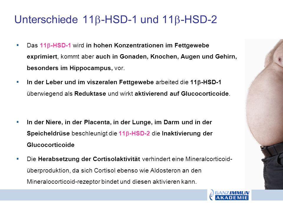 Unterschiede 11 -HSD-1 und 11 -HSD-2 Das 11 -HSD-1 wird in hohen Konzentrationen im Fettgewebe exprimiert, kommt aber auch in Gonaden, Knochen, Augen