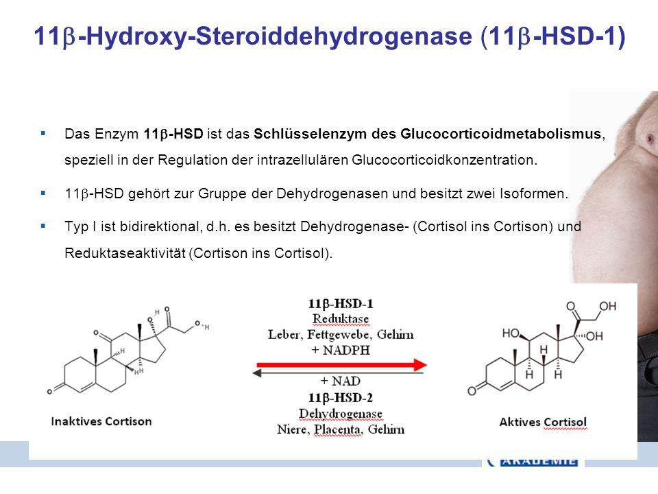 11 -Hydroxy-Steroiddehydrogenase (11 -HSD-1) Das Enzym 11 -HSD ist das Schlüsselenzym des Glucocorticoidmetabolismus, speziell in der Regulation der i
