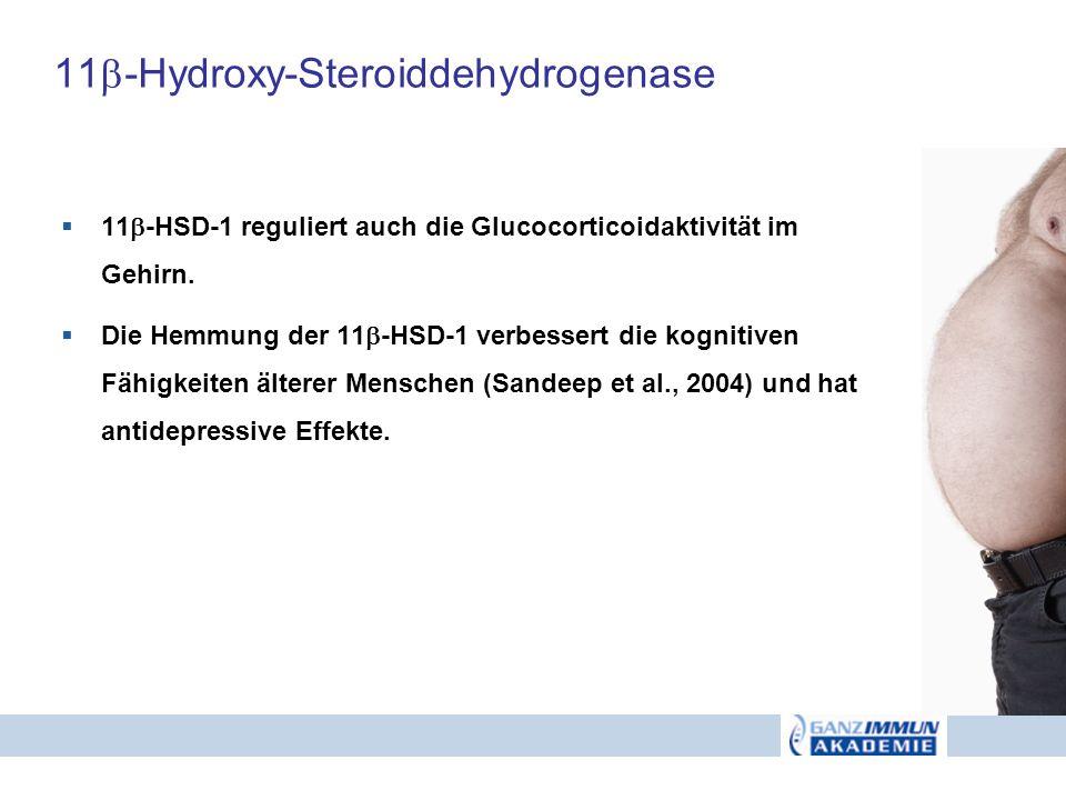 11 -Hydroxy-Steroiddehydrogenase 11 -HSD-1 reguliert auch die Glucocorticoidaktivität im Gehirn. Die Hemmung der 11 -HSD-1 verbessert die kognitiven F