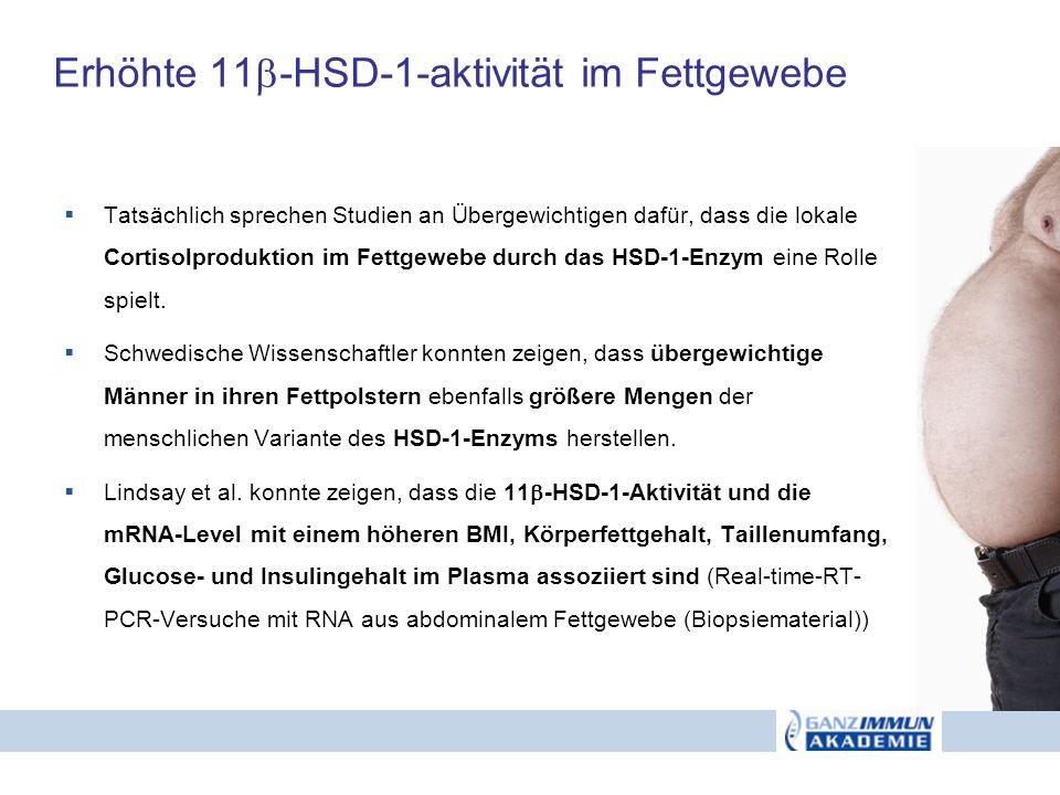 Erhöhte 11 -HSD-1-aktivität im Fettgewebe Tatsächlich sprechen Studien an Übergewichtigen dafür, dass die lokale Cortisolproduktion im Fettgewebe durc