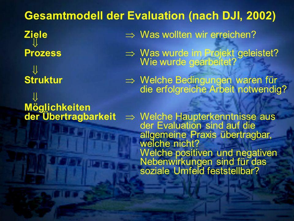 Individuelle Förderung Gesamtmodell der Evaluation (nach DJI, 2002) Ziele Was wollten wir erreichen? Prozess Was wurde im Projekt geleistet? Wie wurde