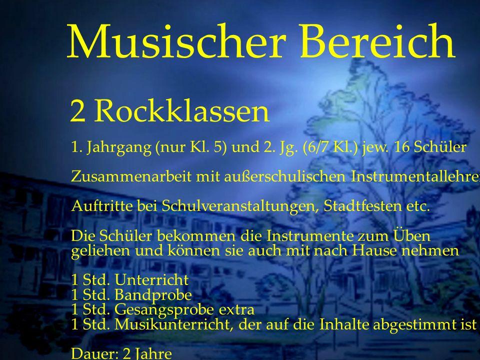Individuelle Förderung Musischer Bereich 2 Rockklassen 1. Jahrgang (nur Kl. 5) und 2. Jg. (6/7 Kl.) jew. 16 Schüler Zusammenarbeit mit außerschulische