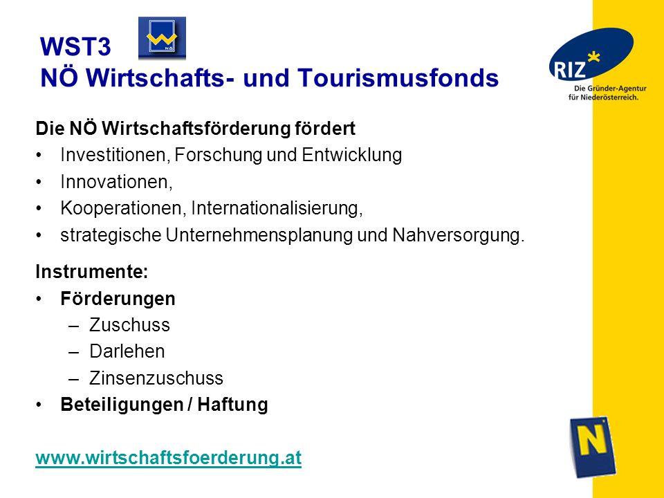 WST3 NÖ Wirtschafts- und Tourismusfonds Die NÖ Wirtschaftsförderung fördert Investitionen, Forschung und Entwicklung Innovationen, Kooperationen, Inte