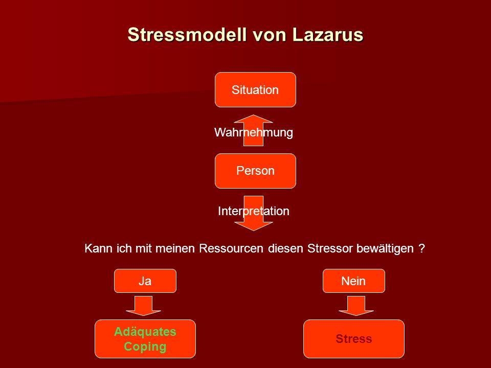 Stressmodell von Lazarus Situation Person Wahrnehmung Interpretation Kann ich mit meinen Ressourcen diesen Stressor bewältigen .