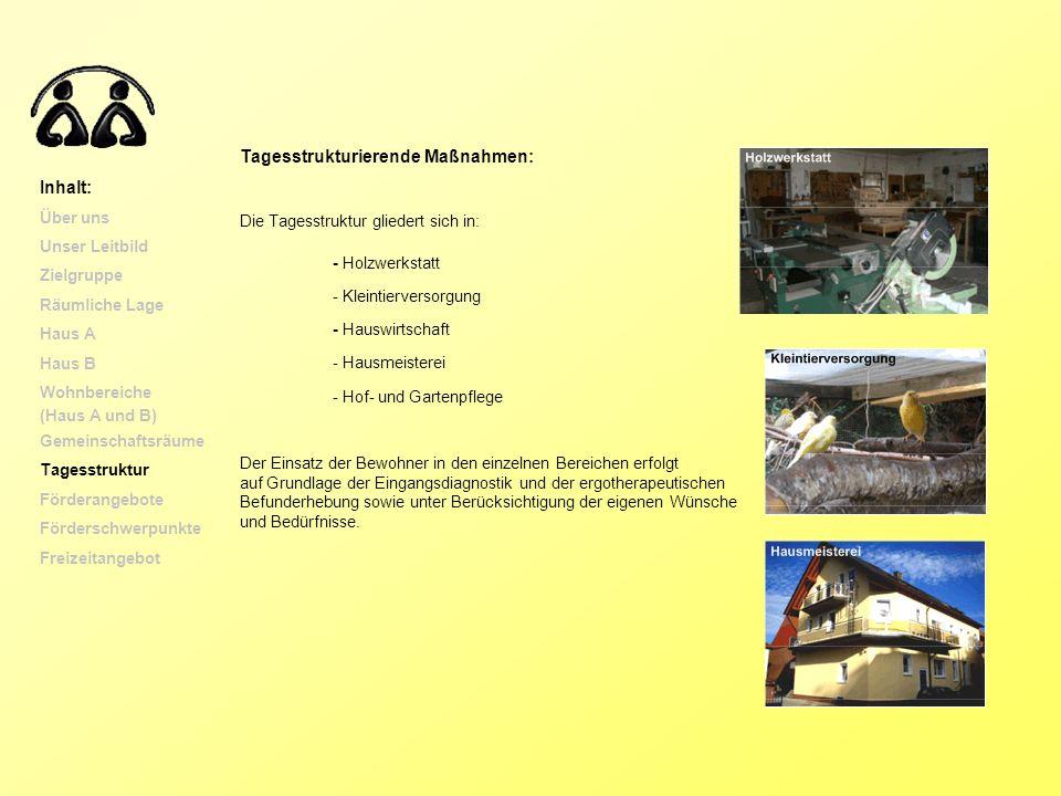 Tagesstrukturierende Maßnahmen: Die Tagesstruktur gliedert sich in: - Holzwerkstatt - Kleintierversorgung - Hauswirtschaft - Hausmeisterei - Hof- und