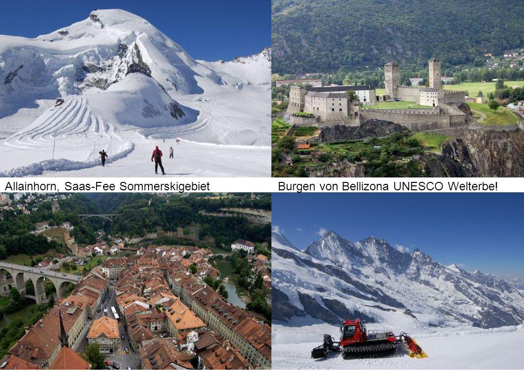 Allainhorn, Saas-Fee SommerskigebietBurgen von Bellizona UNESCO Welterbe!