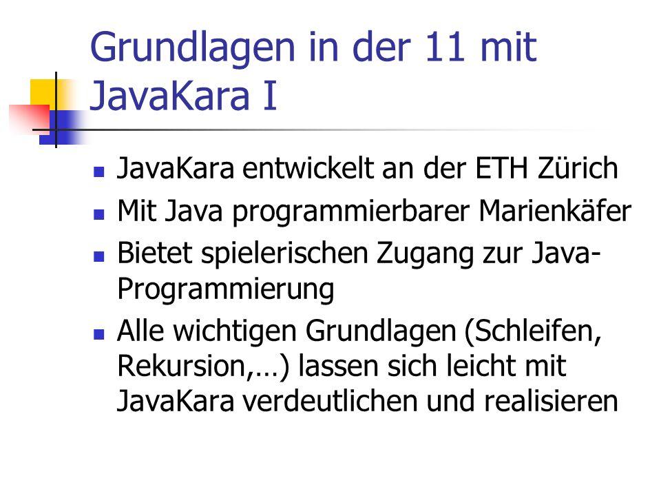 Grundlagen in der 11 mit JavaKara I JavaKara entwickelt an der ETH Zürich Mit Java programmierbarer Marienkäfer Bietet spielerischen Zugang zur Java-