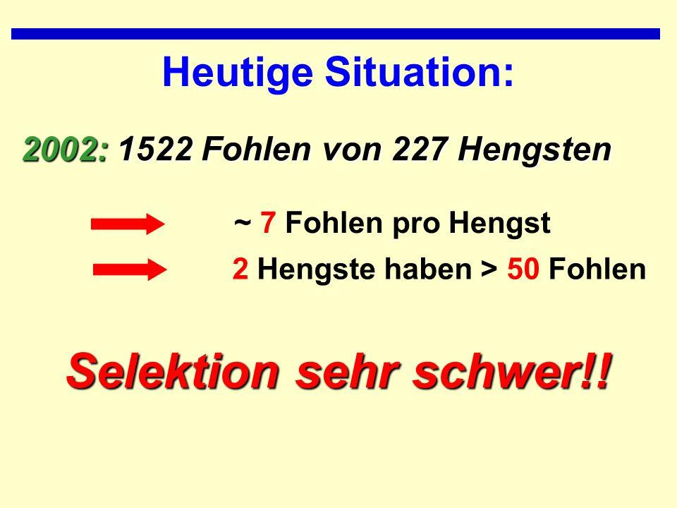Heutige Situation: 2002: 1522 Fohlen von 227 Hengsten ~ 7 Fohlen pro Hengst 2 Hengste haben > 50 Fohlen Selektion sehr schwer!!