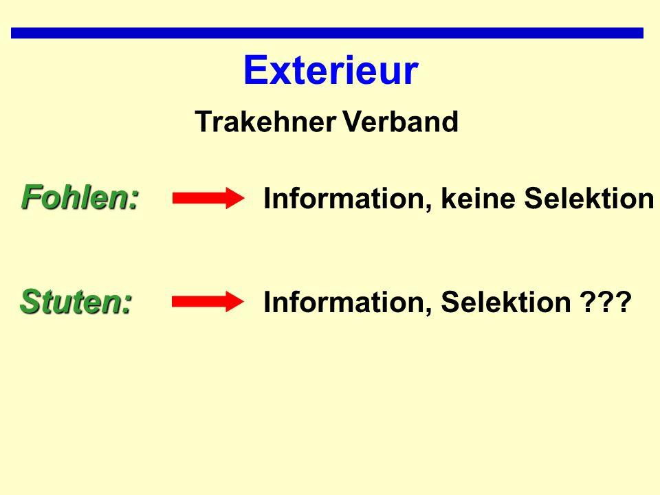Exterieur Information, Selektion ???Stuten: Information, keine SelektionFohlen: Trakehner Verband