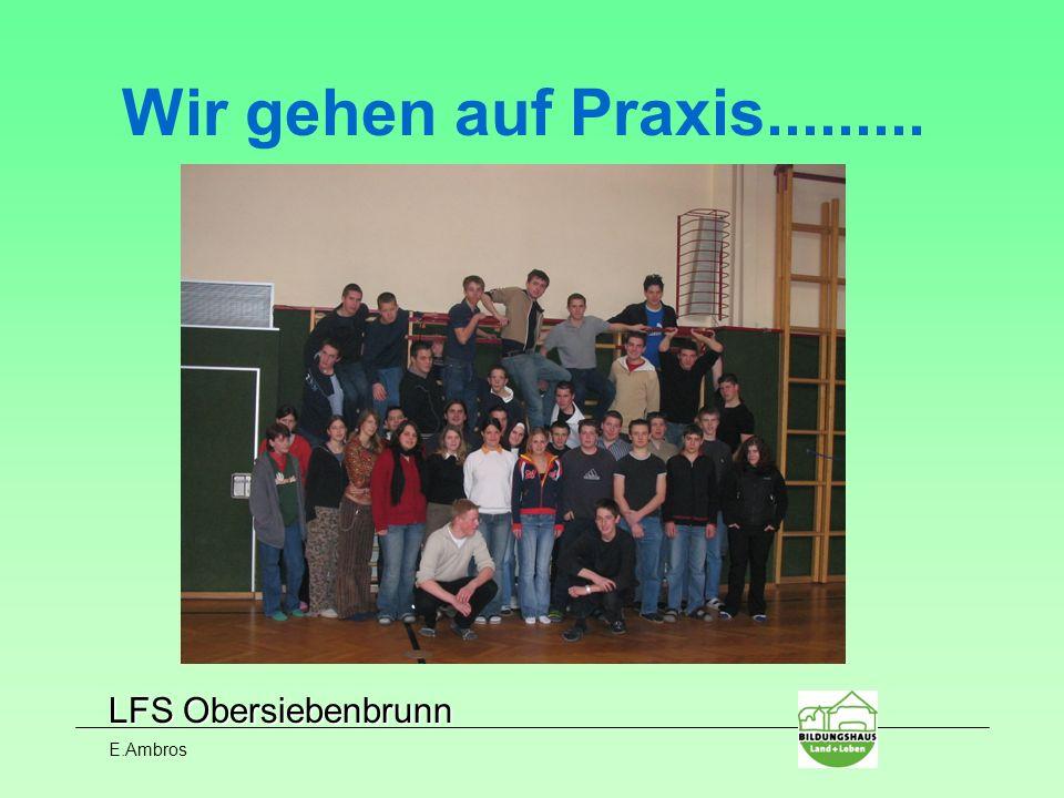 LFS Obersiebenbrunn E.Ambros Wir gehen auf Praxis.........