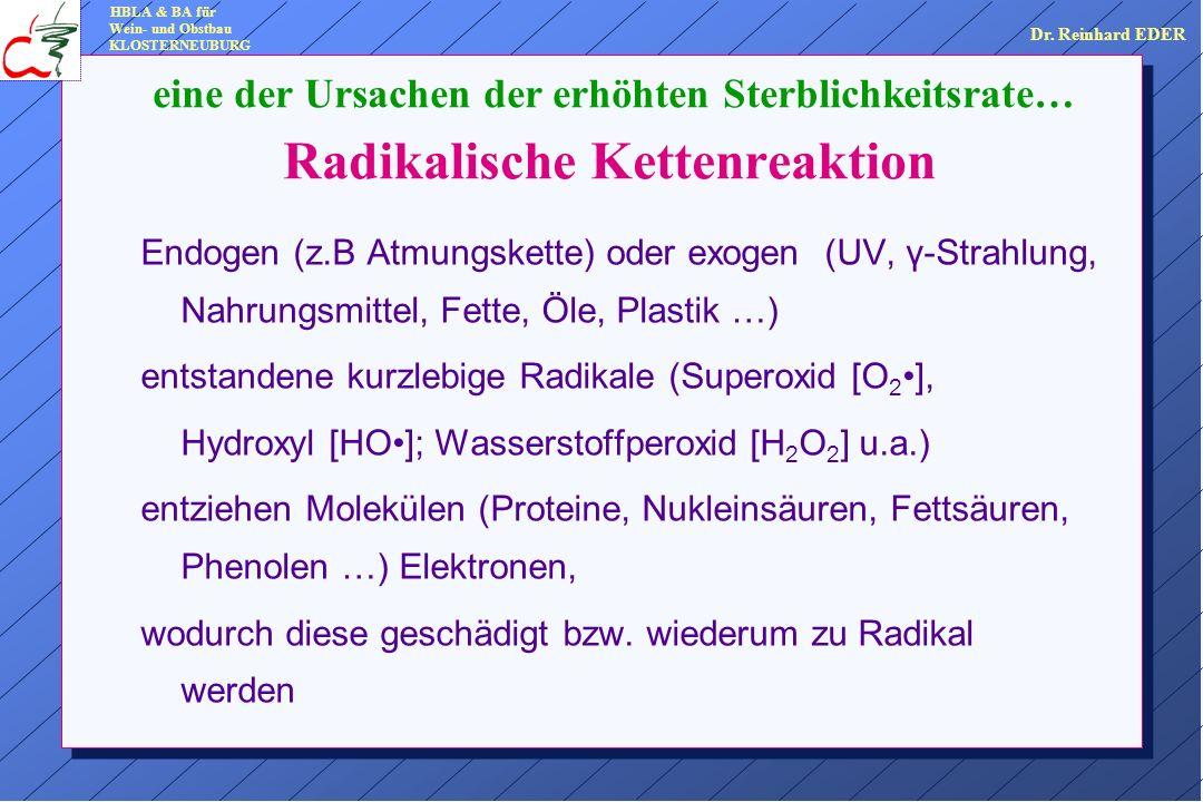 Radikalische Kettenreaktion Endogen (z.B Atmungskette) oder exogen (UV, γ-Strahlung, Nahrungsmittel, Fette, Öle, Plastik …) entstandene kurzlebige Radikale (Superoxid [O 2], Hydroxyl [HO]; Wasserstoffperoxid [H 2 O 2 ] u.a.) entziehen Molekülen (Proteine, Nukleinsäuren, Fettsäuren, Phenolen …) Elektronen, wodurch diese geschädigt bzw.