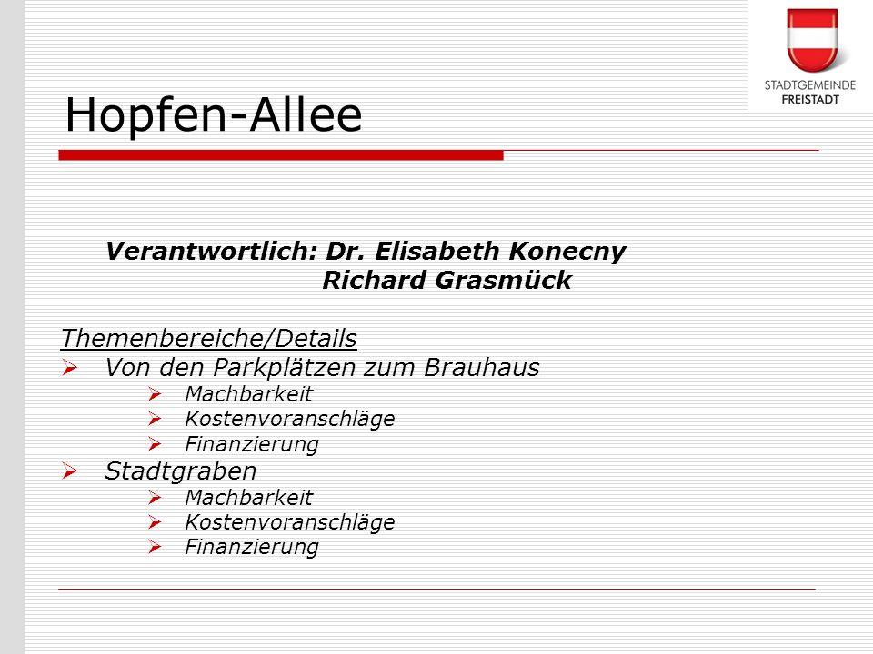 Verantwortlich: Dr. Elisabeth Konecny Richard Grasmück Themenbereiche/Details Von den Parkplätzen zum Brauhaus Machbarkeit Kostenvoranschläge Finanzie