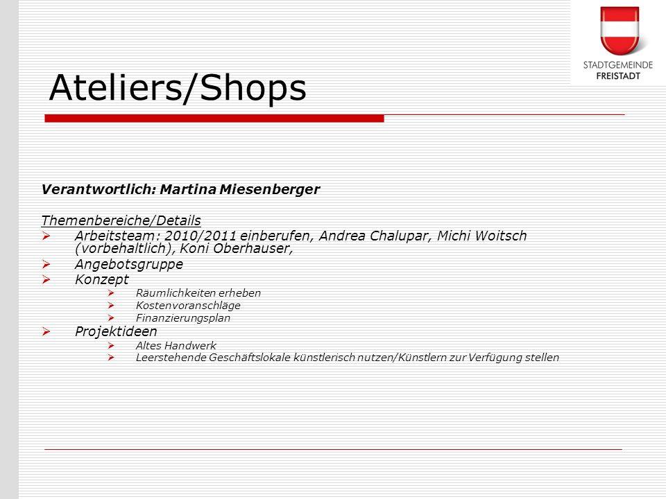 Verantwortlich: Martina Miesenberger Themenbereiche/Details Arbeitsteam: 2010/2011 einberufen, Andrea Chalupar, Michi Woitsch (vorbehaltlich), Koni Ob