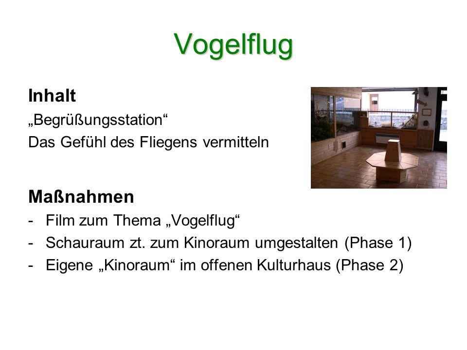 Sprüche klopfen Inhalt Der Vogel im Sprachgebrauch des Menschen Standort Birkenweg (Geländeabbruch) Aktivitäten - Sprüche lesen bzw.