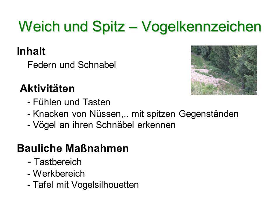 Weich und Spitz – Vogelkennzeichen Inhalt Federn und Schnabel Aktivitäten - Fühlen und Tasten - Knacken von Nüssen,.. mit spitzen Gegenständen - Vögel
