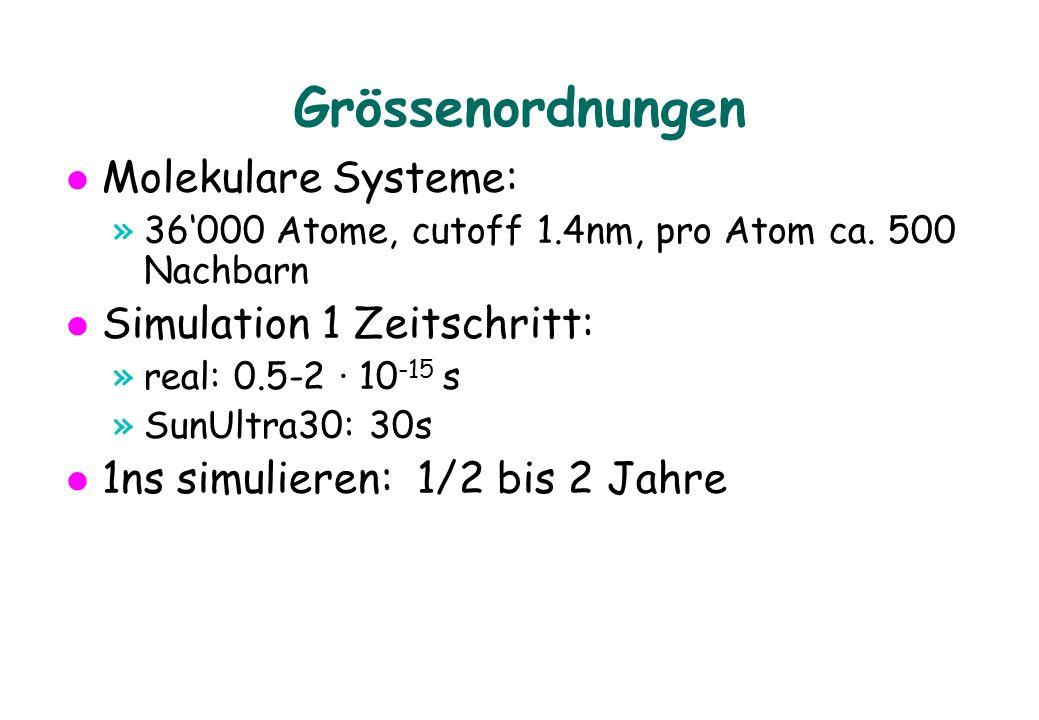 Grössenordnungen Molekulare Systeme: »36000 Atome, cutoff 1.4nm, pro Atom ca. 500 Nachbarn Simulation 1 Zeitschritt: »real: 0.5-2 · 10 -15 s »SunUltra