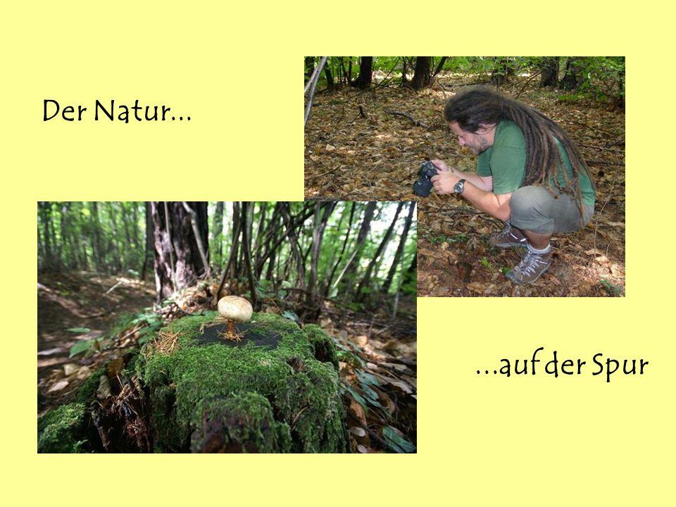 Der Natur......auf der Spur