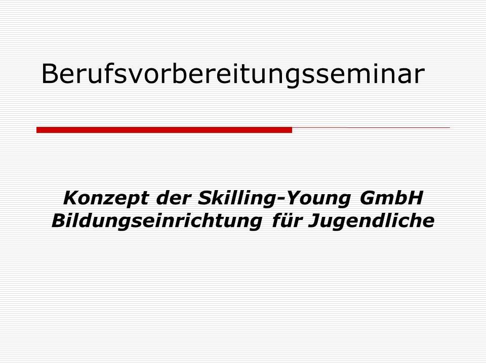 Berufsvorbereitungsseminar Konzept der Skilling-Young GmbH Bildungseinrichtung für Jugendliche