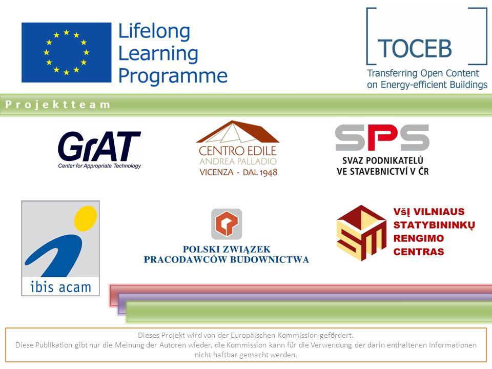 Projektteam Dieses Projekt wird von der Europäischen Kommission gefördert.
