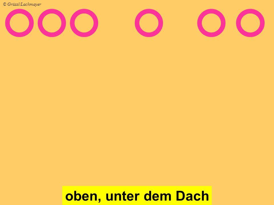 oben, unter dem Dach © Grüssl/Lachmayer