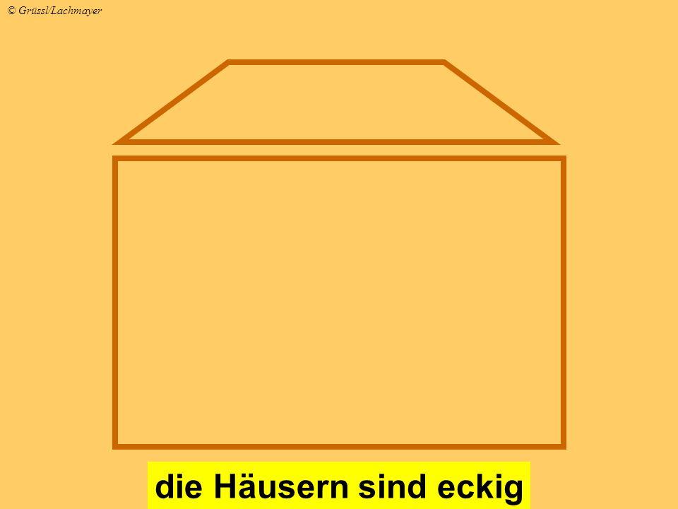 die Häusern sind eckig © Grüssl/Lachmayer