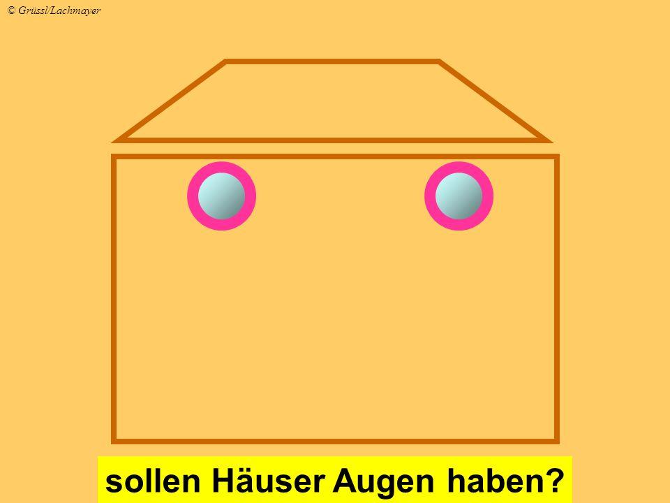 sollen Häuser Augen haben? © Grüssl/Lachmayer