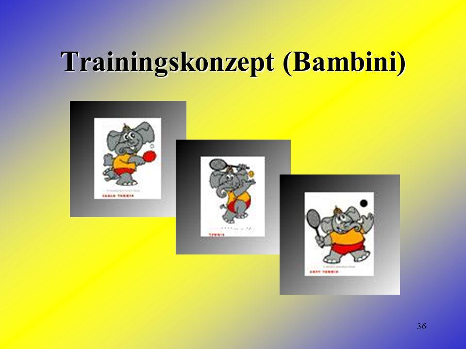 36 Trainingskonzept (Bambini)